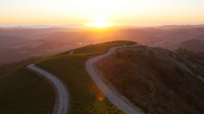 Santa Cruz Mountains Winegrowers